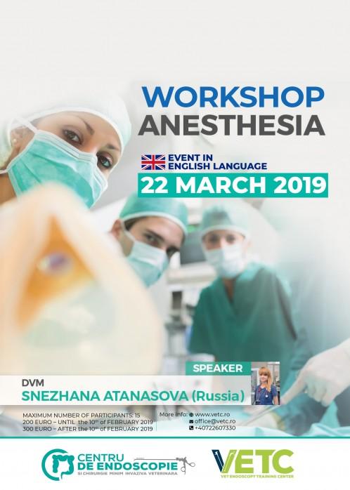 Workshop Anesthesia  -  English Language