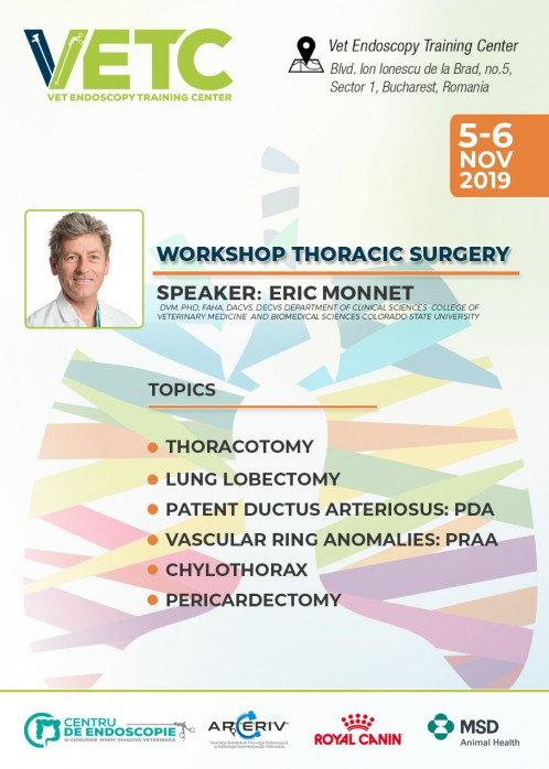 WORKSHOP THORACIC SURGERY
