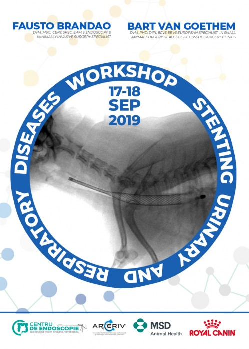 WORKSHOP STENTING URINARY AND RESPIRATORY DISEASES