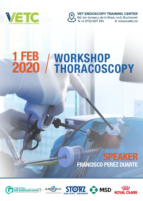 WORKSHOP THORACOSCOPY